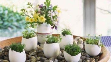 Faire germer les premières graines du jardin