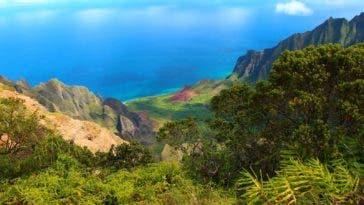 Que faire pour les vacances à Hawaii ?